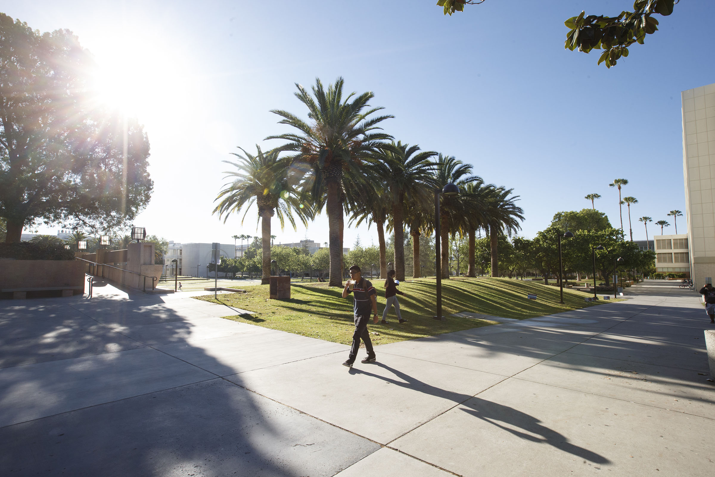 Beyond Academics – The CSUN Student Experience in Los Angeles