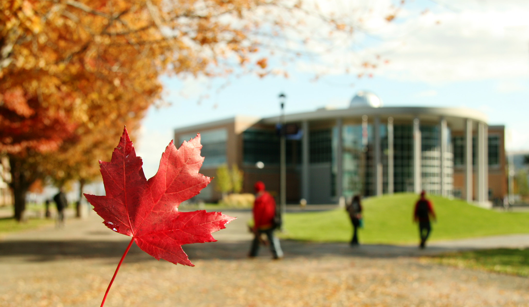 /en/noticia/post/what-studying-canada