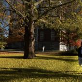 Que tal fazer uma pós-graduação nos Estados Unidos? Conheça a Universidade de Kentucky