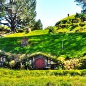 Vivir y estudiar en Nueva Zelanda: el testimonio de una chilena