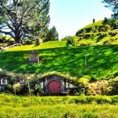 Viver e estudar na Nova Zelândia: o testemunho de uma chilena