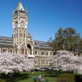 Las 7 universidades más bellas