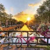 Au Pair na Holanda: saiba o que é preciso para fazer este tipo de intercâmbio no país