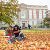 Explora esta encantadora y asequible Universidad de Nueva York