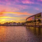 Universidade de Miami: estude em uma das melhores instituições dos EUA e melhore seu inglês