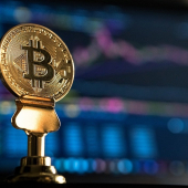 New Trends in Financial Studies: Courses on Cryptocurrencies